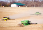 Friends and neighbors of Mike and Lisa Nissen's family gathered Monday to help Mike bring in his soybean harvest.